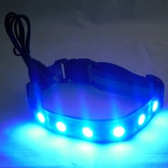 glowing rechargeable dog collar