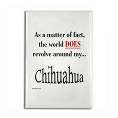 My Life Revolves Around my Chihuahua