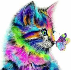 Colorful Animal Paintings, Colorful Animals, Cute Animals, Cat Colors, Tier Fotos, 5d Diamond Painting, Animal Fashion, Oil Painting On Canvas, Painting Art