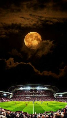 Under the lights. Liverpool Fc Stadium, Soccer Stadium, Liverpool Football Club, Football Stadiums, Football Is Life, Football Field, Fc Barcelona Wallpapers, Liverpool Fc Wallpaper, Manchester United Legends
