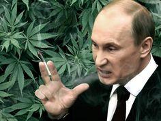Путин курит травку, растаман