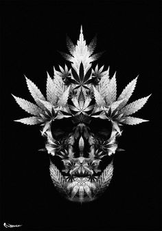 Weed and Skulls Weed Tattoo, Leaf Tattoos, Marijuana Art, Medical Marijuana, Cannabis Oil, Stoner Art, Weed Art, Puff And Pass, Ink Art