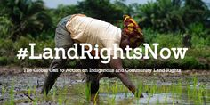 SIGN UP to the @Global_Call_ to Action on #Indigenous and community #LandRightsNow #landrights
