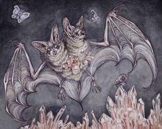two headed bat by CaitlinHackett.deviantart.com on @DeviantArt