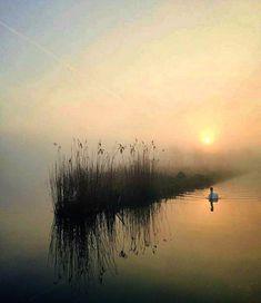 The photo – Photography World Landscape Photography Tips, Artistic Photography, Color Photography, Nature Photography, Watercolor Landscape, Abstract Landscape, Landscape Paintings, Watercolor Art, Landscapes