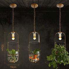 83.20$  Buy now - http://ali7yx.worldwells.pw/go.php?t=32705008929 - Pastoral Chandelier Modern Minimalist Restaurant Creative Ecological Study Cafe Bedside With Water For Glass Plant Chandelier