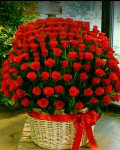 Happy Anniversary tabassum and Amjad Beautiful Rose Flowers, Flowers Gif, Beautiful Flowers Wallpapers, Beautiful Flower Arrangements, Flowers Nature, My Flower, Pretty Flowers, Floral Arrangements, Fresh Flowers