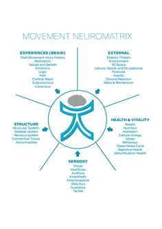 """The Cor-Kinetic """"Movement Neuromatix""""- A multifactoral approach to movement."""