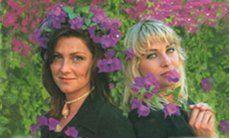 surrounded by purple flowers Ace Of Base, Purple Flowers, Magazine, Cover, Magazines, Warehouse, Newspaper