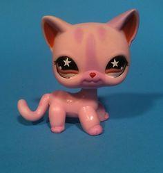 Littlest Pet Shop Cat 933 LPS Pink   eBay