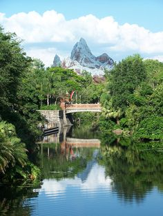 Disneys Animal Kingdom - the only part of Disney that I care to see.