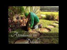 La Costera Paisajismo y Jardineria - YouTube