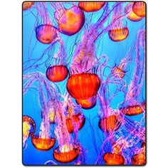 Shower Curtain 72 X 72 Inch Jellyfish Flying Colorful Colorful Ocean Printing Polyester Fabric