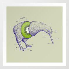 Kiwi Anatomy Art Print by William McDonald - $19.99
