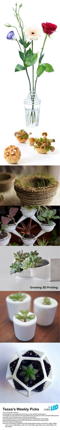 7 examples of 3D printing with and for plants