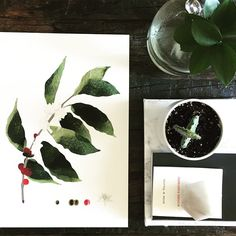 Nature inspired prints for the home by WhiteDoePrints on Etsy