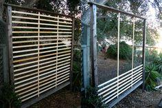 wandbegrünung Sichtschutz selber bauen