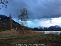 12tel Blick 2017 ins Ried vom Januar bis April Mountains, Nature, Travel, Photos, Sunset, Naturaleza, Viajes, Trips, Nature Illustration