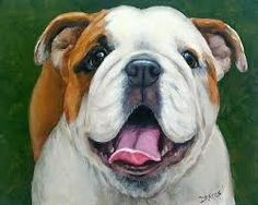 Image result for abstract painting of english bulldog