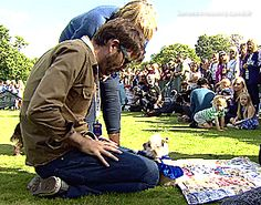 When you realize that even dogs swoon at the sight of David Tennant.