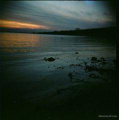 Lake Shore | DailyHolga.com