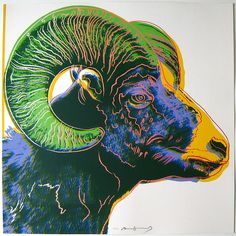 #AndyWarhol Bighorn Ram, from Endangered Species portfolio, (F II. 302), 1983, color screenprint on Lenox Museum Board 38 x 38 inches, edition of 150   http://www.josephklevenefineartltd.com/artists/andy-warhol/andy-warhol-ram.html