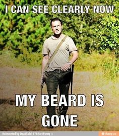 The Walking Dead - Why?!?! WHYYYYYYYYYY!?!?!?!?!  That beard was so epic, it could've had a show on its own! And I'd definitely watch it! RIP Beard Of Awesome RIP...