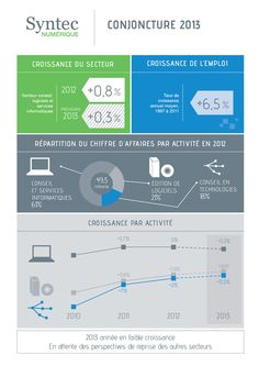 Syntec Numérique - Conjoncture 2013 [Infographic]