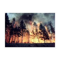we'll set the world on fire. just watch us. ❤ liked on Polyvore featuring backgrounds, pictures, photos, fire, images, fillers and scenery