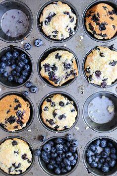The Best Blueberry Muffins   www.floatingkitchen.net