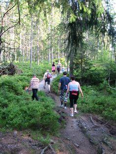 Foreningen Kjekstadmarkas venner Country Roads, Mountains, Nature, Travel, Naturaleza, Viajes, Traveling, Natural, Tourism
