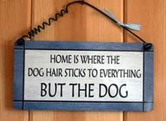 dog quotes - Bing Images