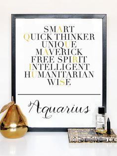 Aquarius Description Print