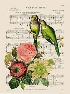 antique dictionary art prints birds