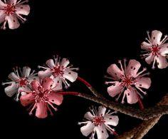 Magica Cecelia: trasforma i nudi artistici in fiori II