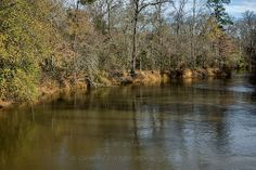 Neches River at Houston-Cherokee County