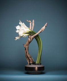 Stunning Unique Small Vase Designs To Refresh Your Room – Creative Flower Arrangements, Flower Arrangement Designs, Ikebana Flower Arrangement, Ikebana Arrangements, Beautiful Flower Arrangements, Wedding Flower Arrangements, Flower Designs, Floral Arrangements, Beautiful Flowers