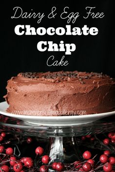 Dairy, Egg, & Nut Free Chocolate Chip Cake-Mom Vs. Food Allergy