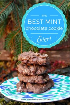 The Best Soft & Chewy Mint Chocolate Cookies