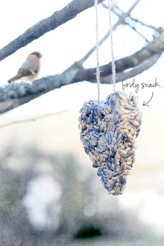 { DIY: Share some love with the birds.. } This recipe uses coconut oil to hold the seed together-I want to try this!
