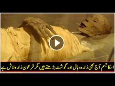 Firon K Baare Men Ek Zabardast Video – Jiski Waja Se Ek Scientist Musalman Ho Gaya - YouTube