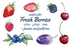 Fresh berries - Illustrations - 1