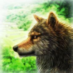Wolf by SheltieWolf on DeviantArt