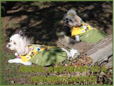 LINE 9 OF THE PUP SCOUT PLEDGE JOIN PUP SCOUTS TODAY AT http://www.pupscoutsusa.com/