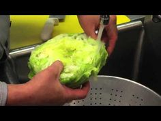 I didn't realize there was a technique for how to create at-home lettuce wraps, but when I've tried in the past, I was pretty unsuccessful; I was able to pull off something that resembled wraps, but they were oddly shaped and never held up. This video is brilliant!!!! A few simple steps (breaking the core, chopping the top, and running it under water), and you have perfectly shaped, full lettuce cups for your meal. This is revolutionary! (How to Make a Lettuce Cup for Lettuce Wrap) ekw