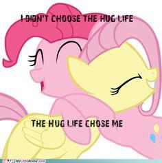 The Hug Life is the Life for Me