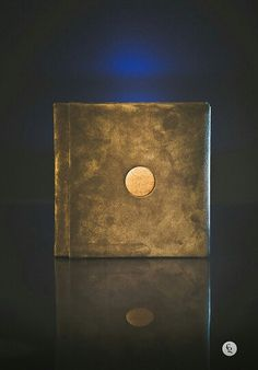 Leather with wooden inserts wedding album.