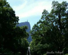 Cristo Redentor visto do Jardim Botânico  - Rio de Janeiro  - Foto: Marília Vidigal Carneiro