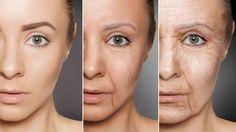 #Científicos revelan si algún día se podrá detener el envejecimiento - Telemundo 40: Telemundo 40 Científicos revelan si algún día se podrá…