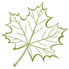 maple leaf: Leaf of a maple, nature symbol, monochrome , isolated pictogram Paper Flowers Craft, Flower Crafts, Patterns In Nature, Flower Patterns, Nature Pattern, Maple Leaf Images, Printable Leaves, Nature Symbols, Quilling Craft